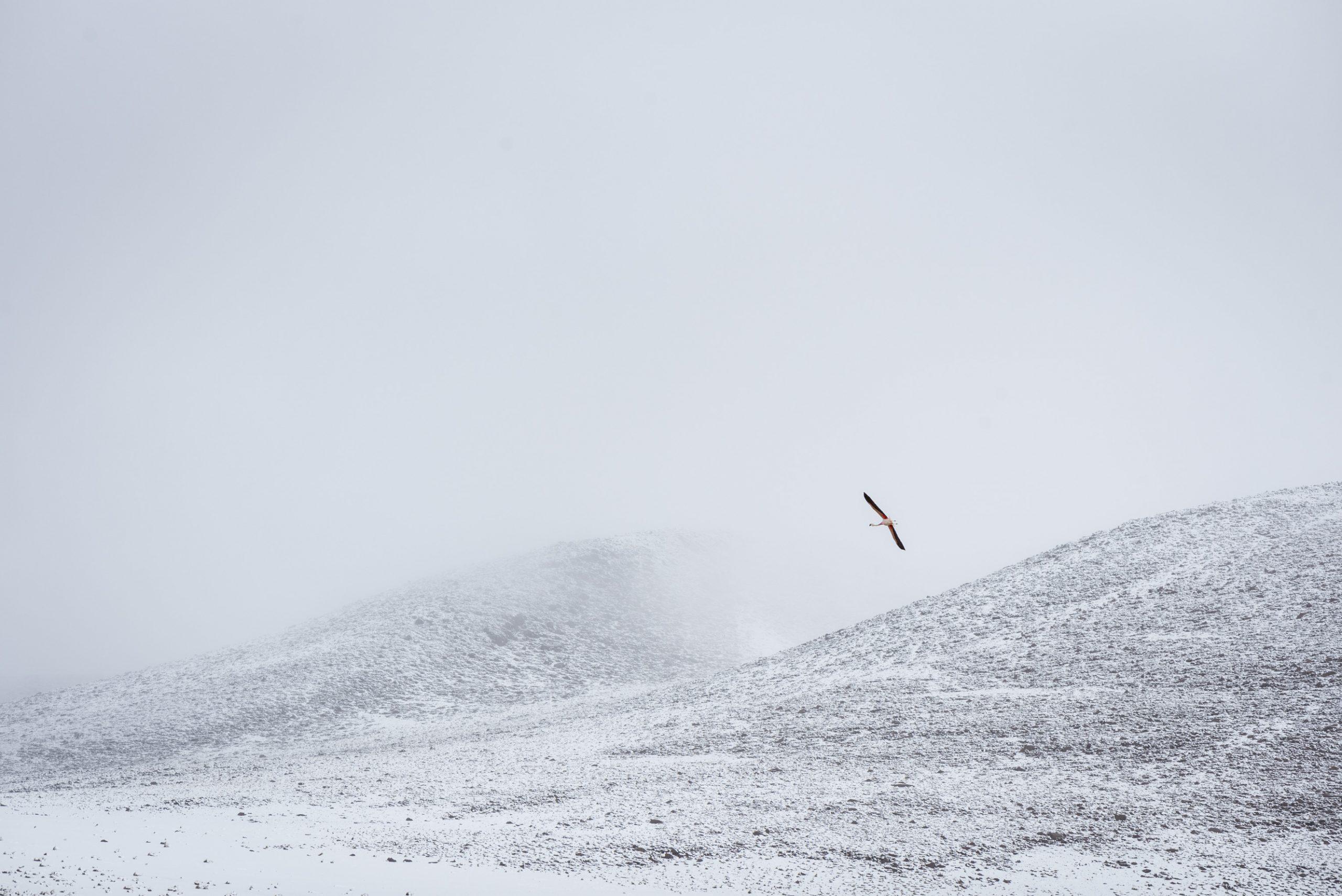 Neige à Lipez